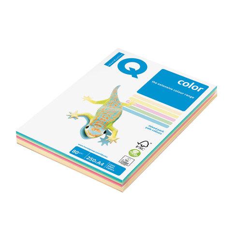 Бумага IQ (АйКью) color А4, 80 г/м, 250 л. (5цв.x50л.), цветная пастель RB01 ш/к 06305  Код: 110692