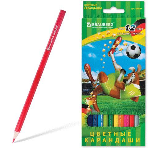 """Карандаши цветные BRAUBERG (Брауберг) """"Football match"""", 12 цветов, заточенные, картонная упаковка,180534  Код: 180534"""