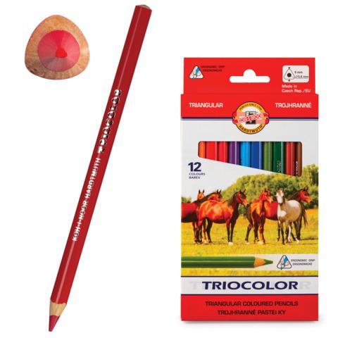 """Карандаши цветные утолщенные KOH-I-NOOR """"Triocolor"""", 12 цв, трехгранные, 5,6мм, заточенные, 3142/12  Код: 181017"""